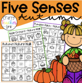 My Five Senses in the Fall