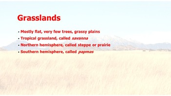 The Five Themes of Geography PowerPoint