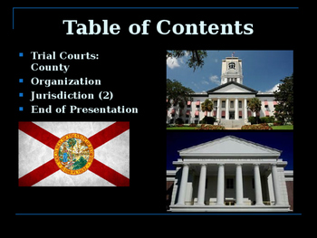 The United States Court System - The State of Florida