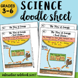 The Flow of Energy - Food Chains - Doodle Notes Sheet - SO EASY to USE!