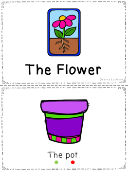 The Flower - a leveled reader & activities