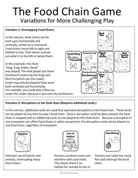 The Food Chain Game and Science Centers!