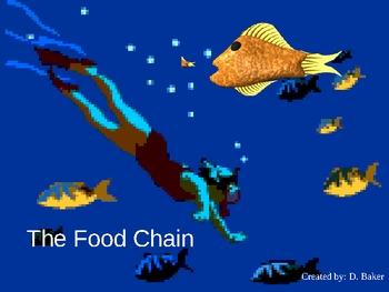 The Food Chain Power Point Presentation