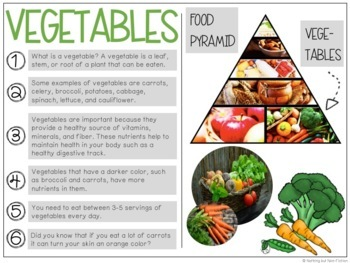 The Food Pyramid + Nutrition