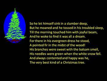 The Foolish Fir Tree