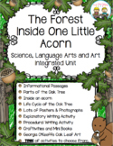 The Forest Inside One Little Acorn ~  Life Cycle of an Oak