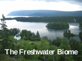 The Freshwater Biome PowerPoint