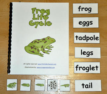 The Frog Life Cycle Adapted Book