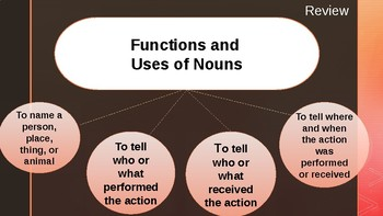 The Function and Use of Nouns (Singular and Plural)