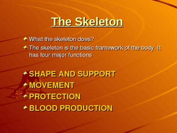The Function of the Skeleton