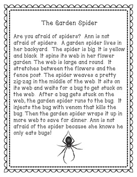 The Garden Spider-  Reading Comprehension Passage for Grades 1-3, Homeschool