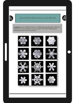 The Geometric Beauty of Snowflakes Unit Study
