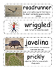 The Gingerbread Cowboy vocabulary cards