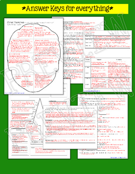THE GIVER NOVEL STUDY LITERATURE GUIDE FLIP BOOK