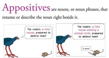 The Grammar Slammer