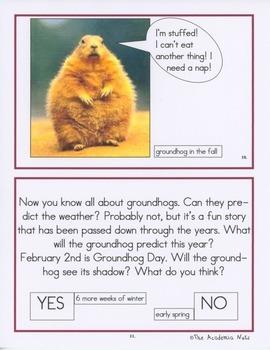 The Grandeur of Groundhogs