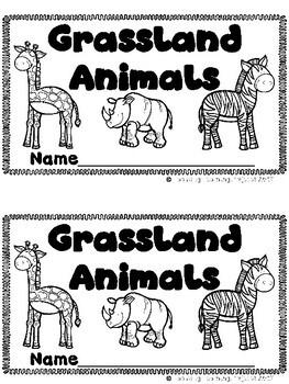 The Grassland Bundle  (2 Sight Word Books and 2 Colored Teacher Lap Books)