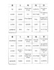 The Great Ball Game Bingo Game ~ Language Arts Activity