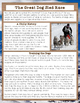 The Great Dog Sled Race Nonfiction Close Reading Passage & Writing Activity