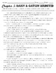 The Great Gatsby Chapter 5 Close Read and Point of View Sc