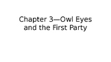 The Great Gatsby: Understanding Eckleburg and Owl Eyes