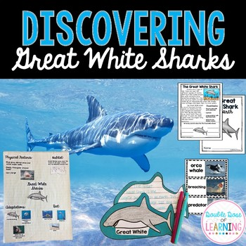 The Great White Shark Research Unit with PowerPoint