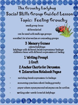 The Grouchy Ladybug Social Skills Packet