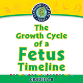 The Growth Cycle of a Fetus Timeline - NOTEBOOK Gr. 3-8