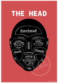The HEAD Poster, classroom decoration, art, English vocabulary, EFL/ESL/ELL