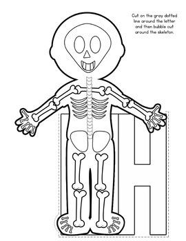 The HUMAN BODY Flip Flap Book®