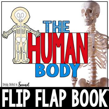 The HUMAN BODY Flip Flap Book™