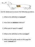 The Hallo-Wiener Dictionary Activity