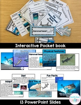 The Hammerhead Shark Research Unit with PowerPoint