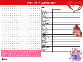 The Heart Biology Wordsearch Sheet Starter Activity Keywords Science Health