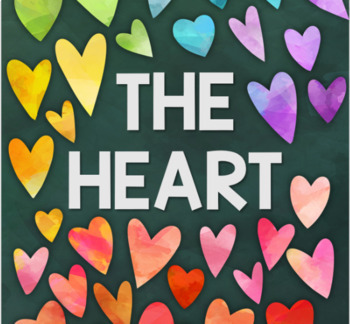 The Heart - Science & Art Focus (Anatomical Form)