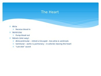 The Heart and Circulatory Systems Powerpoint