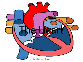The Heart ppt
