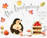 The Hedgehog - Autumn Charm Clipart Collection, Fall Leaves, Fruits, Cards