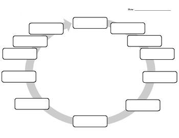 The Hero's Journey Graphic Organizer Guide