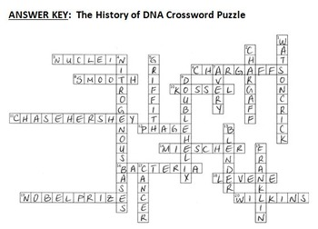 the history of dna crossword editable by tangstar science tpt. Black Bedroom Furniture Sets. Home Design Ideas