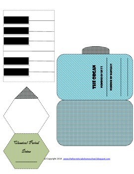 The History of Keyboard Instruments