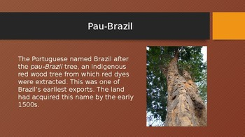 The History of Latin America: The History of Brazil (Lesson 4/13)