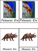 The History of the Earth: Geological/Evolutionary Timeline of Life Cards