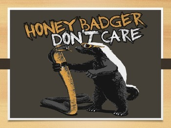 Mammals- The Honey Badger
