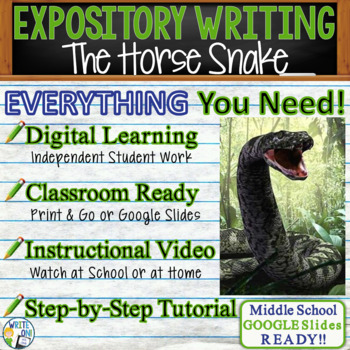 The Horse Snake by Huynh Nhuong - Text Dependent Analysis Expository Writing