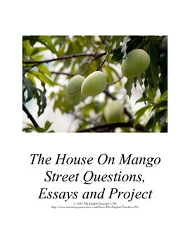The House on Mango Street Discussion Guide, Essay Questions, and Writing Project