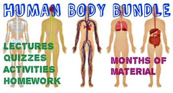 Body Systems Bundle: MONTHS of PowerPoints, Quizzes, Homew