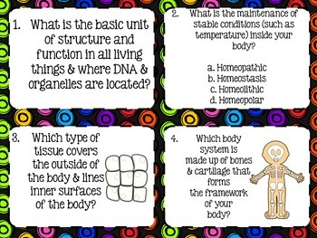 The Human Body Task Cards
