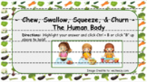 The Human Body - Chew, Swallow, Squeeze & Churn (Digestive
