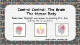 The Human Body - Control Center (Nervous System) Interacti